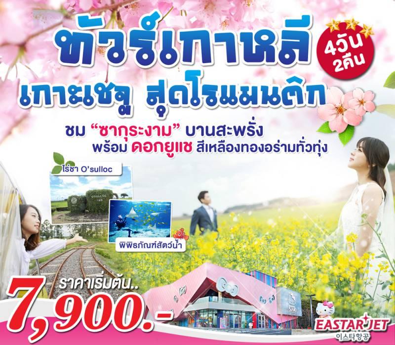 ทัวร์เกาหลี โปรโมชั่นเกาะเชจู ฤดูกาลซากุระ ดอกยูแช  เที่ยวครบทุกไฮไลท์  4 วัน 2 คืน โดย Eastar Jet
