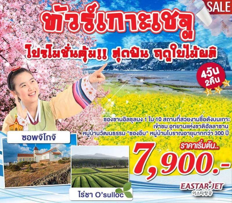 KP17pro ทัวร์เกาหลี โปรโมชั่นเกาะเชจู ฤดูกาลซากุระ ดอกยูแช SPECIAL SPRING 4 วัน 2 คืน โดย Eastar Jet