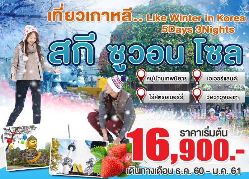 KW01c ทัวร์เกาหลี เที่ยวเกาหลี ซูวอน-โซล หมู่บ้านเทพนิยาย เล่นสกี สวนสนุกเอเวอร์แลนด์ 5 วัน 3 คืน โดยสายการบิน Jin Air