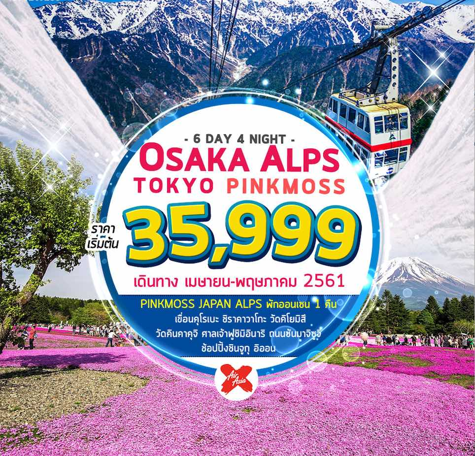 ทัวร์ญี่ปุ่น โอซาก้า ทาคายาม่า+กำแพงน้ำแข็ง โตเกียว ชมทุ่งพิงค์มอส 6 วัน 4 คืน การบินไทยแอร์เอเชียเอ็กซ์