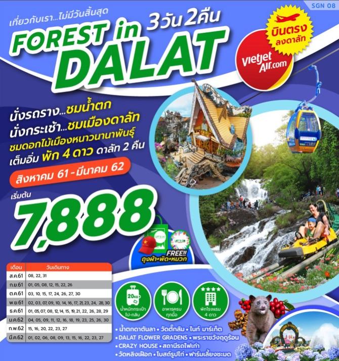 ทัวร์เวียดนามใต้ ดาลัด สวนดอกไม้เมืองหนาว นั่ง CABLE CAR บินตรงดาลัท 3 วัน 2 คืน โดยสายการบิน VIETJET AIR