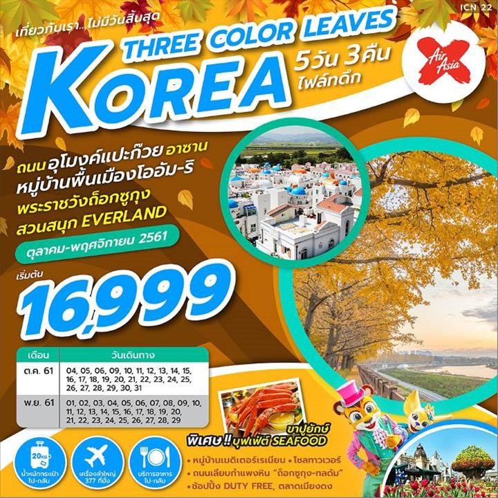 ทัวร์เกาหลี โซล อาซาน ใบไม้เปลี่ยนสี สวนสนุกเอเวอร์แลนด์  ช้อปปิ้งตลาดเมียงดง 5 วัน 3 คืน โดยสายการบินแอร์เอเชียเอ็กซ์