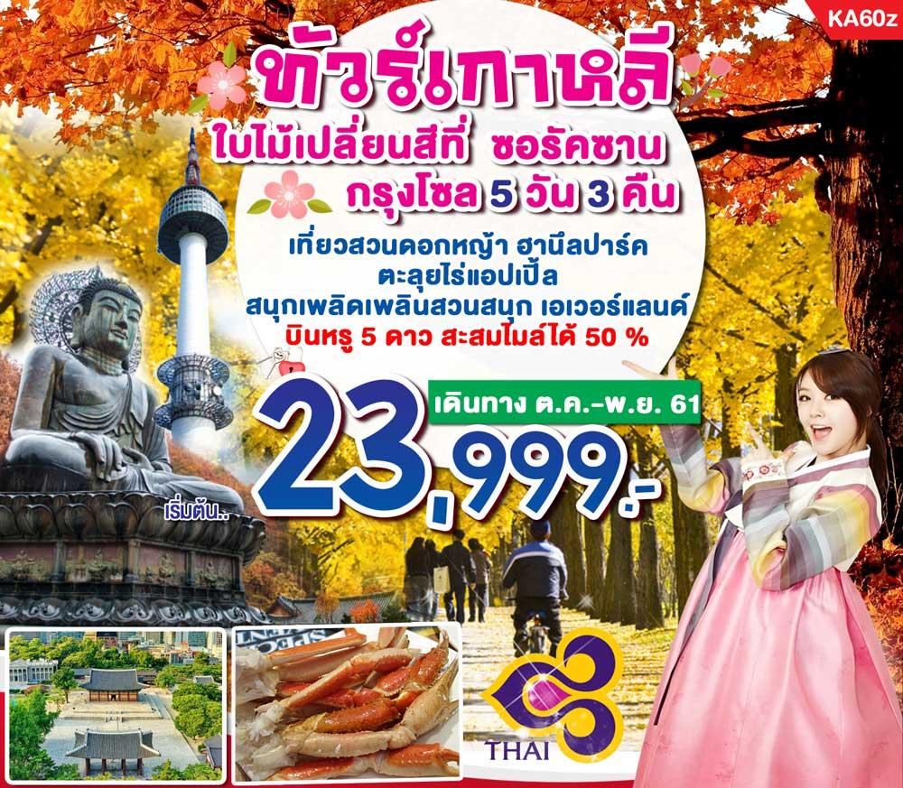 ทัวร์เกาหลี โซล เกาะนามิ อุทยานแห่งชาติซอรัคซาน บินหรู อยู่ดี 5 วัน 3 คืน โดยสายการบินไทย