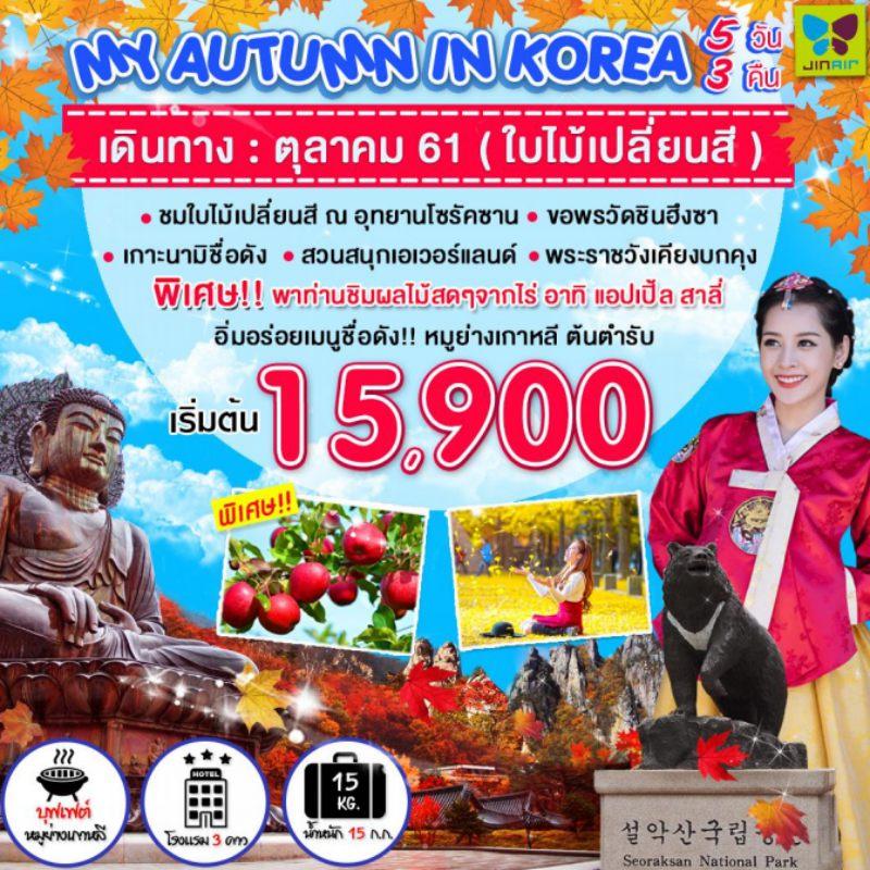 ทัวร์เกาหลี โซล อุทยานโซรัคซาน  สวนสนุกเอเวอร์แลนด์ 5 วัน 3 คืน โดยสายการบิน Jin Air (LJ)