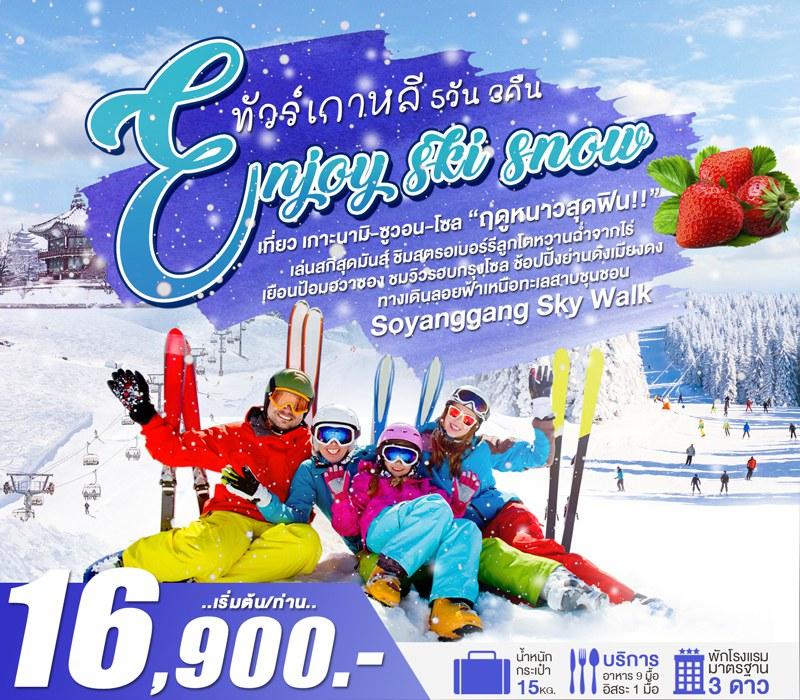 ทัวร์เกาหลี เที่ยวกรุงโซล เกาะนามิ เล่นสกีหิมะสุดมันส์ ชิมสตรอเบอร์รีจากไร่ ช้อปปิ้งย่านดัง  5 วัน 3 คืน โดยสายการบิน Jin Air (LJ)