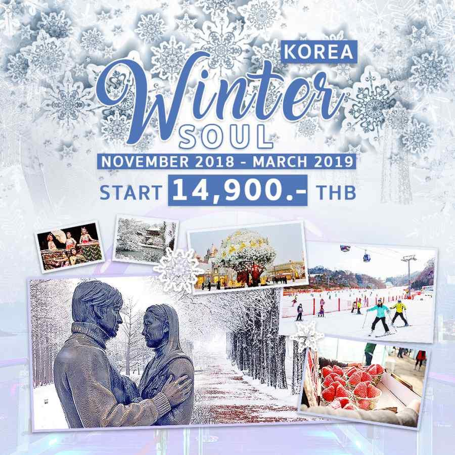 ทัวร์เกาหลี ต้อนรับฤดูหนาว เที่ยวเกาะนามิ ซูวอน โซล ตะลุยสกีหิมะ ปั่น RAIL BIKE ชมวิว พบกับความท้าทาย!! ทางเดินลอยฟ้าเหนือทะเลสาบชุนชอน Soyanggang Sky Walk 5 วัน 3 คืน โดยสายการบิน LJ, 7C, TW, ZE