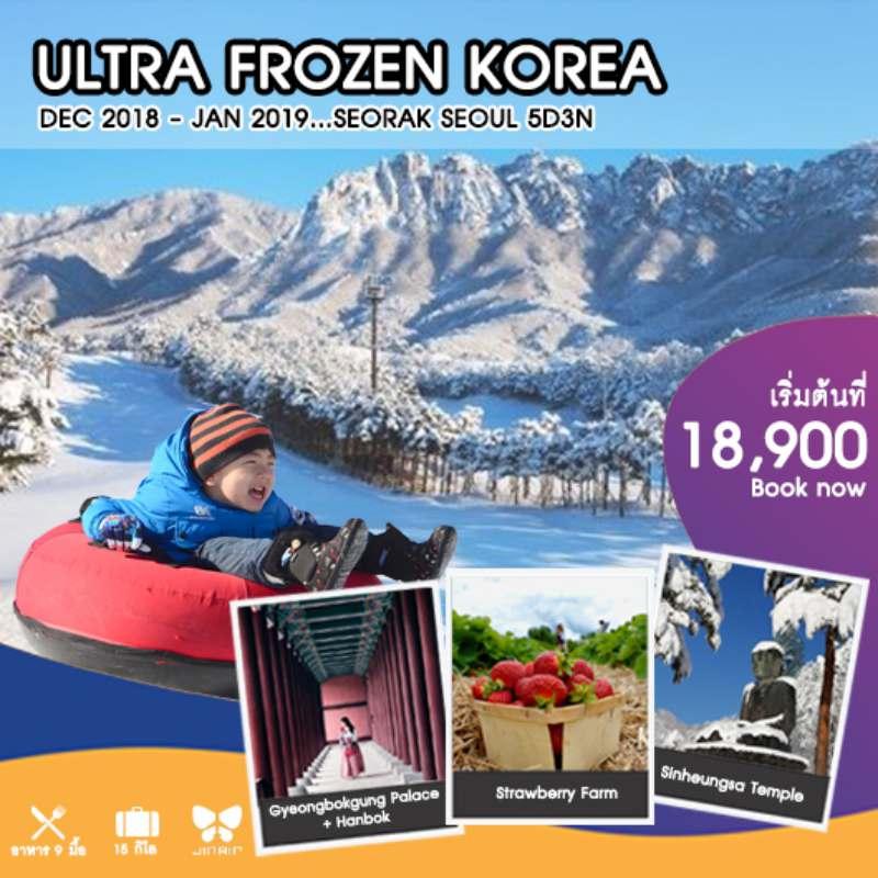 ทัวร์เกาหลี โซล เกาะนามิ อุทยานแห่งชาติโซรัคซาน ลานสกีหิมะ สวมชุดฮันบกเดินชมพระราชวังคยองบก 5 วัน 3 คืน โดยสายการบิน JIN AIR