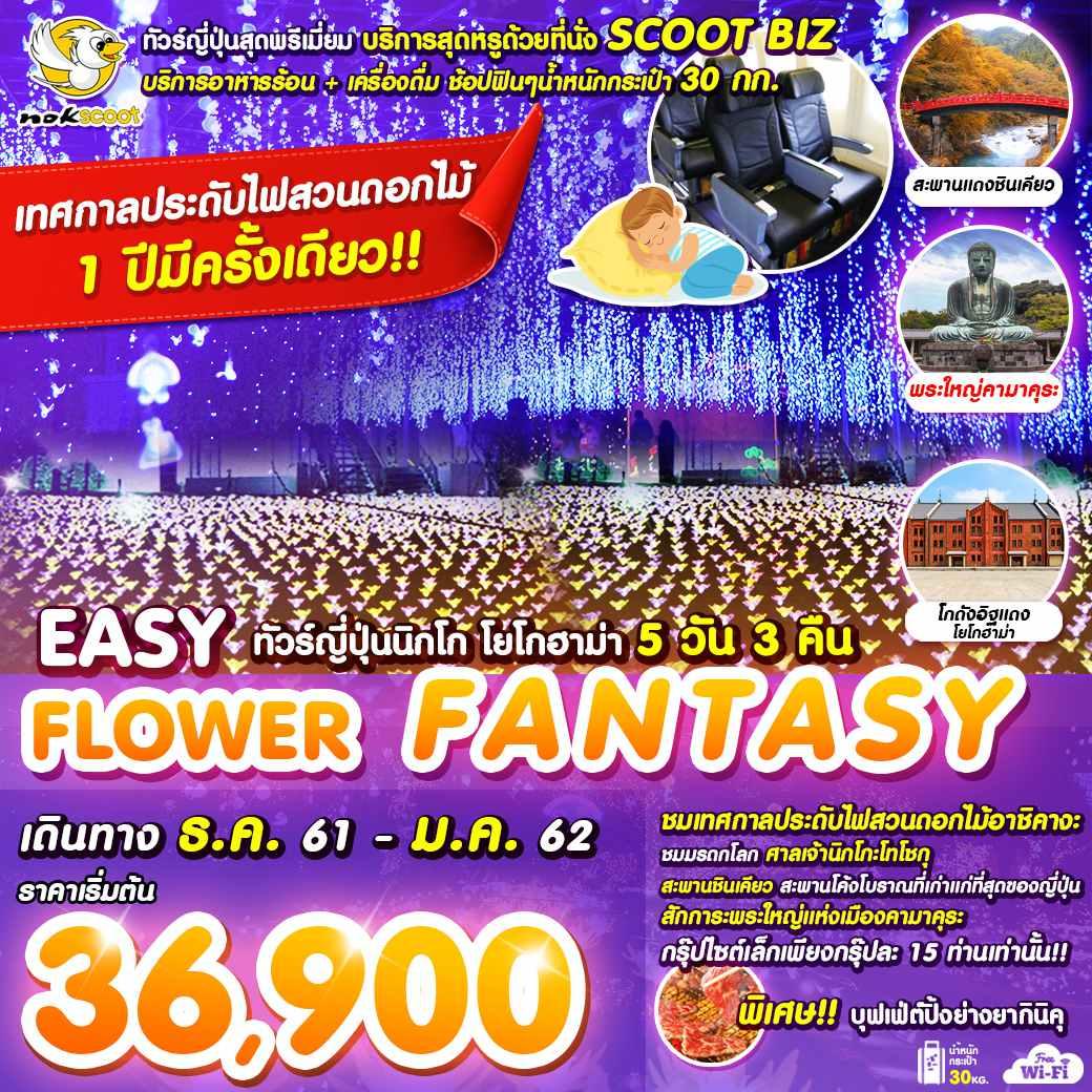 ทัวร์ญี่ปุ่นสุดพรีเมี่ยม!! นิกโก้ คามาคุระ โยโกฮาม่า ชมเทศกาลประดับไฟสวนดอกไม้ นมัสการพระใหญ่ไดบุทสึ 5 วัน 3 คืน Nok Scoot (XW)