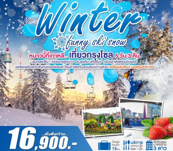 ทัวร์เกาหลี สนุกสุดฟิน.. หรรษาฤดูหนาว เที่ยวกรุงโซล สวนกรีนเฮาส์สตรอว์เบอร์รี่ เอเวอร์แลนด์ ตะลุยหิมะสกีสโนว์ 5 วัน 3 คืน โดยสายการบิน ZE, TW, LJ, 7C