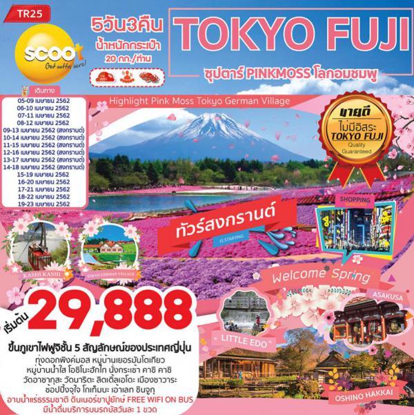 ทัวร์ญี่ปุ่น โตเกียว ฟูจิ หมู่บ้านน้ำใส นั่งกระเช้า คาชิ คาชิ วัดอาซากุสะ เมืองซาวาระ 5 วัน 3 คืน โดยสายการบิน Scoot (TR)