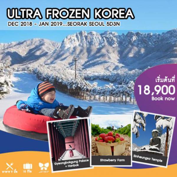 ทัวร์เกาหลี โซล เกาะนามิ อุทยานแห่งชาติโซรัคซาน ลานสกีหิมะ สวมชุดฮันบกเดินชมพระราชวังเคียงบกกุง 5 วัน 3 คืน โดยสายการบิน JIN AIR