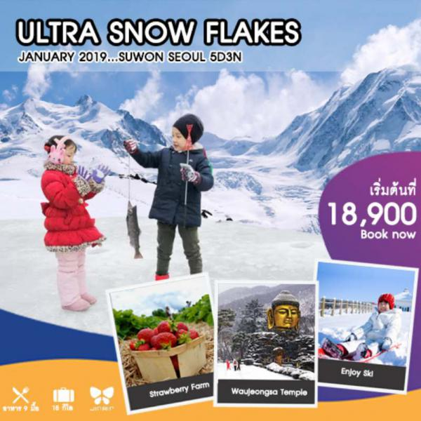 ทัวร์เกาหลี โซล เทศกาลตกปลาน้ำแข็ง  วัดวาวูจองซา ไร่สตรอเบอร์รี่  สวนสนุกเอเวอร์แลนด์ ช้อปปิ้งย่านฮงแด โซลทาวเวอร์ 5  วัน  3  คืน โดยสายการบิน JIN AIR (LJ)