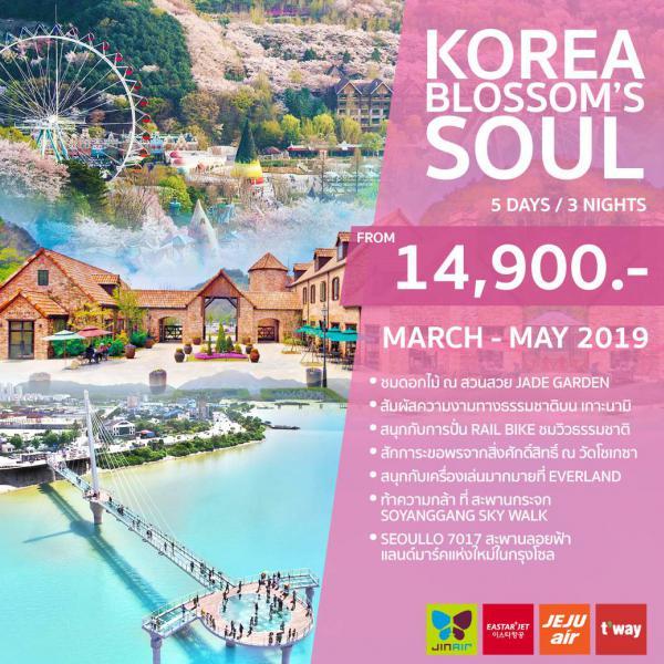 ทัวร์เกาหลี เที่ยวเกาะนามิ กรุงโซล ชมซากุระสุดโรแมนติก ปั่นเรลไบค์ชื่นชมธรรมชาติ ชมสวนรุกขชาติ Jade Garden ท้าความกล้า!! สะพานกระจกโซยังกัง สกายวอล์ค 5 วัน 3 คืน โดยสายการบิน ZE, TW, LJ, 7C