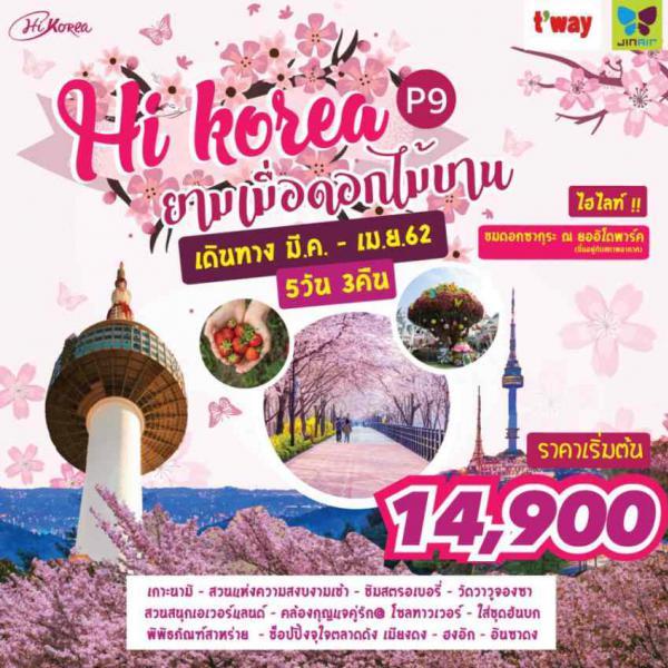 ทัวร์เกาหลี เที่ยวกรุงโซล ตามรอยซีรีย์เกาะนามิ เทศกาลดอกไม้บานชมซากุระงาม ณ ยออิโด ขอพรสิ่งศักดิ์สิทธิ์วัดวาวูจองซา ชมวิว 360 องศา N-Seoul Tower ช้อปปิ้ง 3 ย่านดัง.. เมียงดง, ฮงอิก, อินซาดง 5 วัน 3 คืน โดยสายการบิน TW, LJ