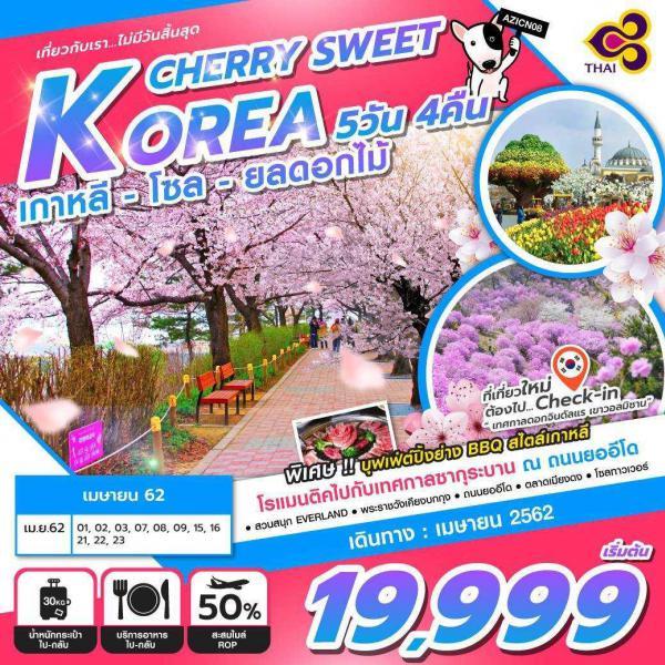 ทัวร์เกาหลี โซล เทศกาลดอกจินดันแร สวนสนุกล็อตเต้ เมียงดง อิสระ Free Day 1 วัน 5 วัน 4 คืน โดยสายการบินไทยแอร์เวย์ (TG)
