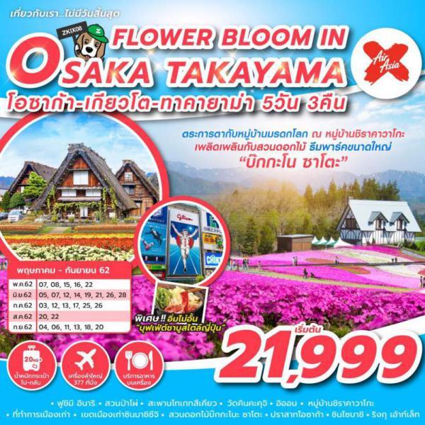 ทัวร์ญี่ปุ่น โอซาก้า เกี่ยวโต คาทายาม่า ตระการตากับหมู่บ้านมรดกโลก เพลิดเพลินกับสวนดอกไม้ 5 วัน 3 คืนโดยสายการบิน AIR ASIA X