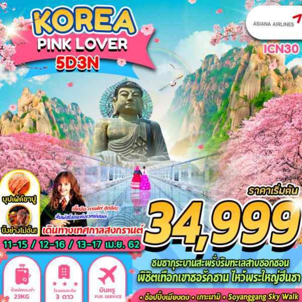 ทัวร์เกาหลี โซล ซากุระ ชุนชอน เกาะนามิ โซรัคซาน วัดชินฮึงซา โซลทาวเวอร์ ล็อตเต้เวิลด์ ซากุระทะเลสาบซอกซน เมียงดง ฮงแด โดยสายการบิน Asiana Airlines (OZ)