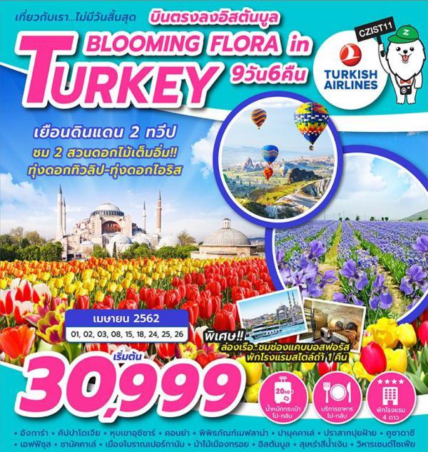 ทัวร์ตุรกี อิสตันบูล ทรอย อังการ่า คัปปาโดเจีย เกอราเม่ ปามุคคาเล่ ปราสาทปุยฝ้าย สุเหร่าสีน้ำเงิน วิหารเซนต์โซเฟีย ทุ่งดอกไอริส ทุ่งดอกทิวลิป 9 วัน 6 คืน โดยสายการบิน Turkish Airlines (TK)