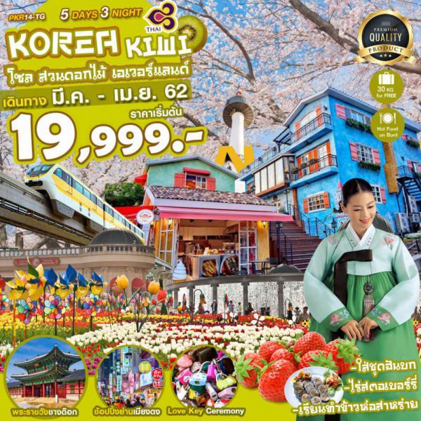 ทัวร์เกาหลี โซล ซากุระ เมืองโพชอน สวนยออิโด รถไฟฟ้ารางMONO สวนแห่งความสงบยามเช้า เมียงดง ฮงแด 5 วัน 3 คืน  โดยสายการบินไทยแอร์เวย์ (TG)