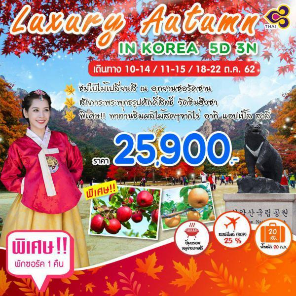ทัวร์เกาหลี ซอรัคซาน-เกาะนามิ-กรุงโซล ชมใบไม้เปลี่ยนสี ณ อุทยานแห่งชาติ สักการะพระใหญ่วัดชินฮึงซา เพลิดเพลินสวนสนุกเอเวอร์แลนด์ ชมวิวรอบกรุงโซล 5 วัน 3 คืน โดยสายการบิน Thai Airways (TG)
