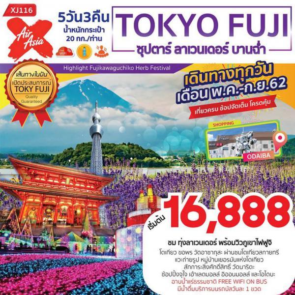 ทัวร์ญี่ปุ่น โตเกียว ฟูจิ ทุ่งลาเวนเดอร์ ภูเขาไฟฟูจิ วัดอาซากุสะ โตเกียวสกายทรี วัดนาริตะ 5 วัน 3 คืนโดยสายการบิน AIR ASIA X (XJ)