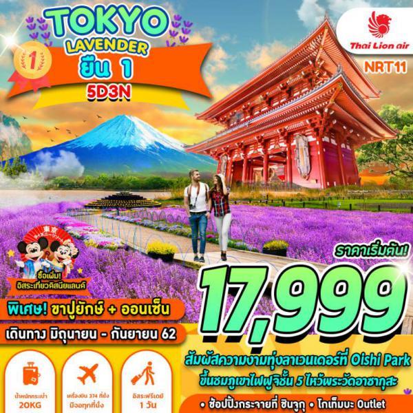 ทัวร์ญี่ปุ่น โตเกียว ฟูจิ ทุ่งลาเวนเดอร์ โออิชิ พาร์ค ภูเขาไฟฟูจิ วัดอาซากุสะ ชินจูกุ 5 วัน 3 คืนโดยสายการบิน THAI LION AIR (SL)