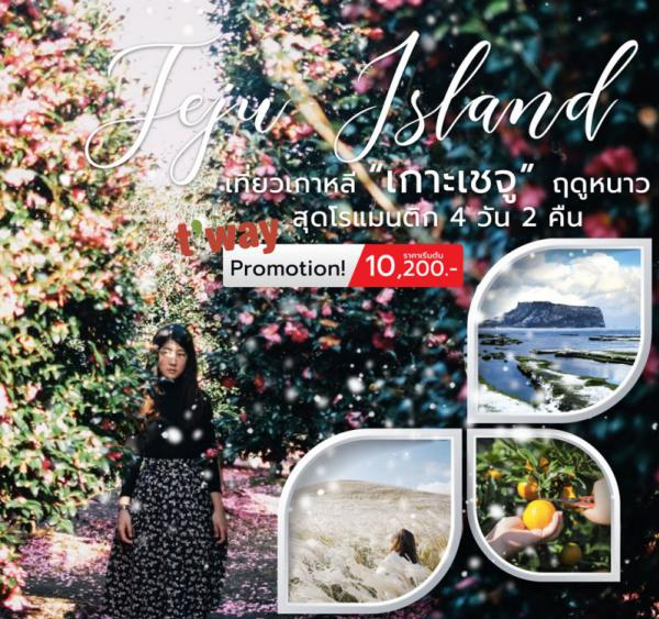 ทัวร์เกาหลีเกาะเชจู สุดฟินฤดูหนาว เยือนชายหาดกวางชิกิทัศนียภาพอันงดงาม ภูเขาไฟซองซานอิลจูบง ไม่พลาดชม!! สวนดอกคามิลเลีย 4 วัน 2 คืน โดยสายการบิน Eastar Jet (ZE)