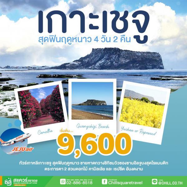 ทัวร์เกาหลีเกาะเชจู สุดฟินฤดูหนาว ชายหาดกวางชิกิชมวิวซองซานอิลจูบงสุดโรแมนติก ตระการตา 2 สวนดอกไม้ คามิลเลีย และ เรปซีด อันงดงาม 4 วัน 2 คืน โดยสายการบิน JEJU AIR (7C)