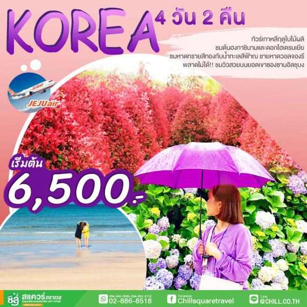ทัวร์เกาหลีฤดูใบไม้ผลิ ถ่ายรูปสุดชิคกับต้นฮงกาชินามูและดอกไฮเดรนเยียสุดโรแมนติก ชมหาดทรายสีทองกับน้ำทะเลสีฟ้า ณ ชายหาดวอลจองรี พลาดไม่ได้!! ชมวิวสวยบนยอดเขาซองซานอิลชุบง 4 วัน 2 คืน โดยสายการบิน JEJU AIR (7C)