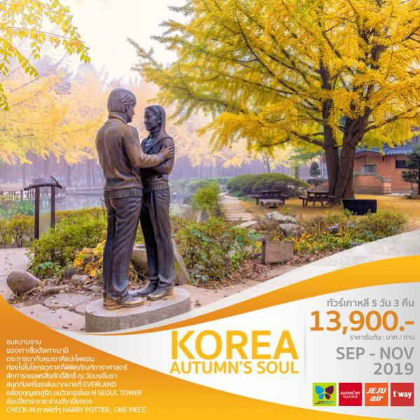 ทัวร์เกาหลี โซล ซูวอน เกาะนามิ  โซลทาวเวอร์ หุบเขาศิลปะโพชอน สวนสนุกเอเวอร์แลนด์ ช้อปปิ้งเมียงดง 5 วัน 3 คืน โดยสายการบิน EASTAR JET / JEJU AIR / JIN AIR / T'WAY