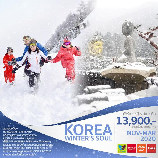 ทัวร์เกาหลี โซล เกาะนามิ สวนสนุกเอเวอร์แลนด์ อิสระเล่นสกี 5วัน 3คืน โดยสายการบิน JET(ZE) / JEJU AIR(7C) / JIN AIR(LJ) / T'WAY(ZE)