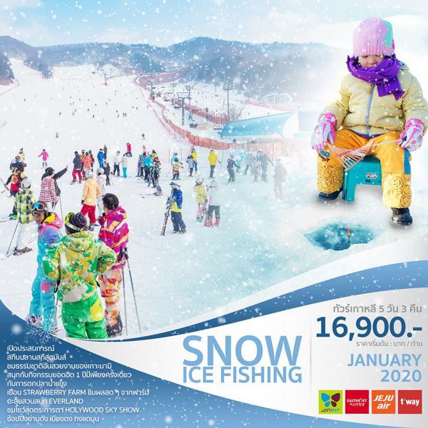 ทัวร์เกาหลี โซล ซูวอน เทศกาลตกปลาน้ำแข็ง เกาะนามิ ไร่สตรอว์เบอร์รี เคียงบกกุง ช้อปปิ้งเมียงดง ทงแดมุน 5 วัน 3 คืนโดยสายการบิน EASTAR JET / JEJU AIR / JIN AIR / T'WAY