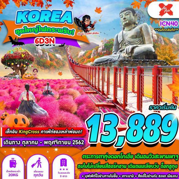ทัวร์เกาหลี เกาะนามิ ทุ่งดอกโคเชีย สวนสนุกเอเวอร์แลนด์ 6วัน 3คืน โดยสายการบิน Air Asia X (XJ)