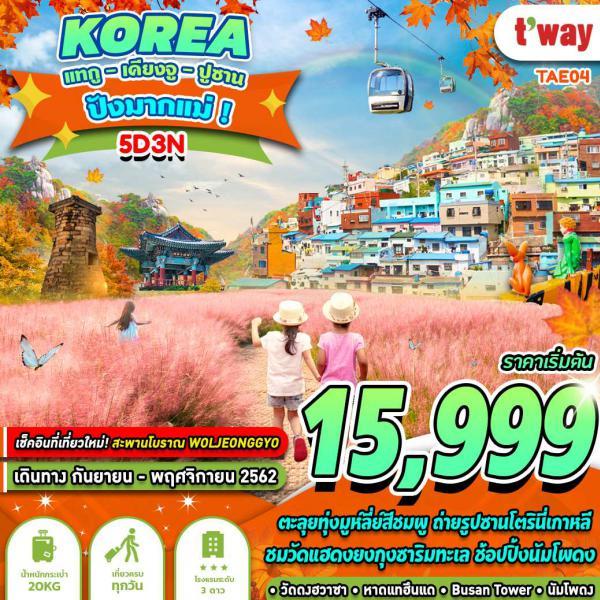 ทัวร์เกาหลี แทกู เคียงจู ปูซาน สะพานโบราณ สวนสนุกเอเวอร์แลนด์  5วัน 3คืน โดยสายการบิน T'WAY AIR (TW)