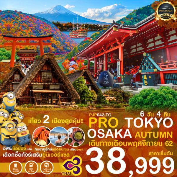 ทัวร์ญี่ปุ่น เที่ยว 2 เมืองสุดคุ้ม! โตเกียว-โอซาก้า ฤดูใบไม้เปลี่ยนสีสุดโรแมนติก 6 วัน 4 คืน โดยสายการบิน Thai Airways (TG)