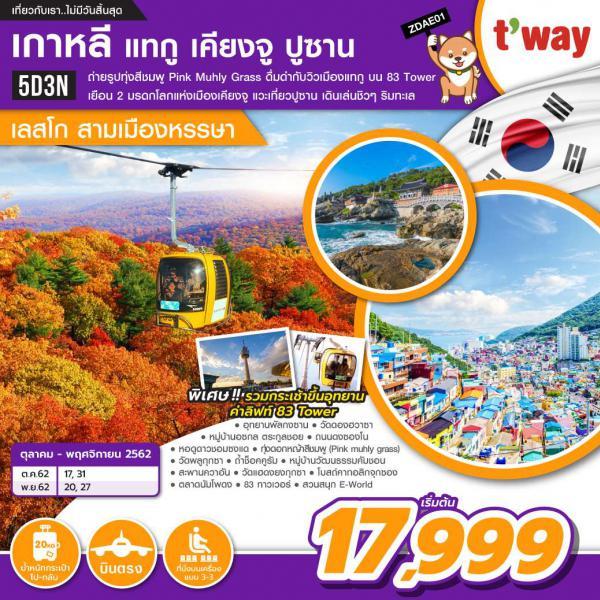 ทัวร์เกาหลี เที่ยวสุดคุ้ม 3 เมือง!! แทกู เคียงจู ปูซาน 5 วัน 3 คืน โดยสายการบิน T'way Air (TW)