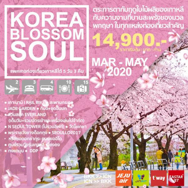 ทัวร์เกาหลี เทศกาลซากุระ โซล เกาะนามิ สวนสนุกเอเวอร์แลนด์ วัดโชเกซา สวนยออิโด เมียงดง ทงแดมุน 5 วัน 3 คืน โดยสายการบิน EASTAR JET, JEJU AIR, T'WAY, JIN AIR