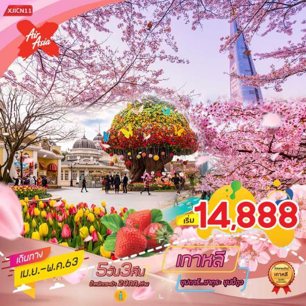 ทัวร์เกาหลี โซล เกาะนามิ เทศกาลดอกซากุระบาน สวนสนุกเอเวอร์แลนด์ 5วัน 3คืน โดยสายการบิน AIR ASIA X(XJ)