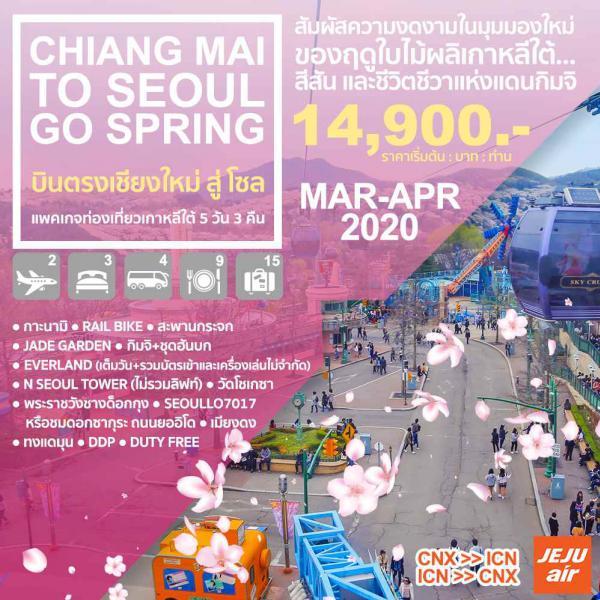 ทัวร์เกาหลีใต้ โซล เกาะนามิ สะพานกระจก สวนสนุกเอเวอร์แลนด์ N SEOUL TOWER พระราชวังชางด็อกกุง SEOUL7017 ชมดอกซากุระ ถนนยออิโด 5วัน 3คืน โดยสายการบิน JEJU AIR (7C)