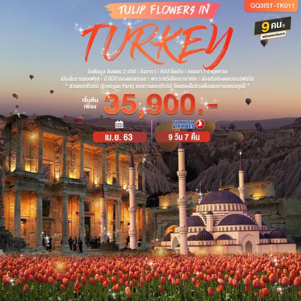TULIP FLOWERS IN TURKEY ตุรกี 9 วัน 7 คืน โดยสายการบินเตอร์กิช แอร์ไลน์ (TK)