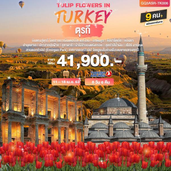 TULIP FLOWERS IN TURKEY ตุรกี 8 วัน 6 คืน โดยสายการบินเตอร์กิช แอร์ไลน์ (TK)