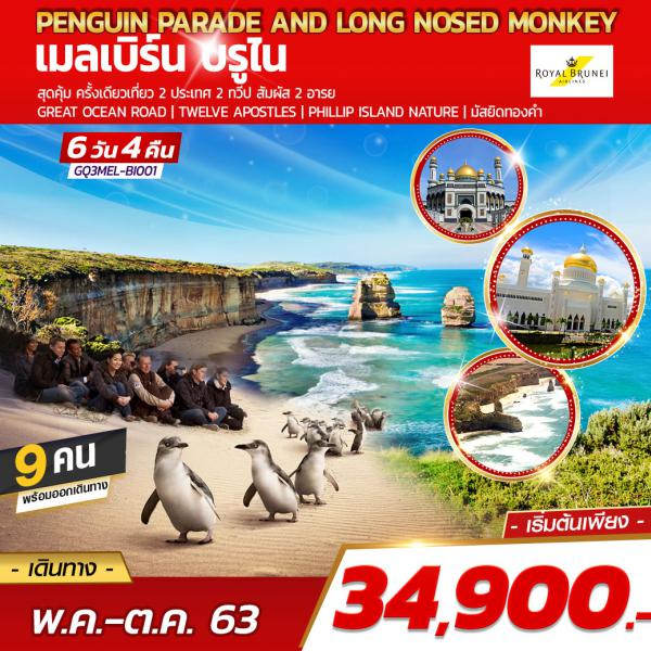 Penguin parade and Long nosed monkey  เมลเบิร์น บรูไน 6DAYS 4NIGHTS โดยสายการบินรอยัลบรูไน (BI)