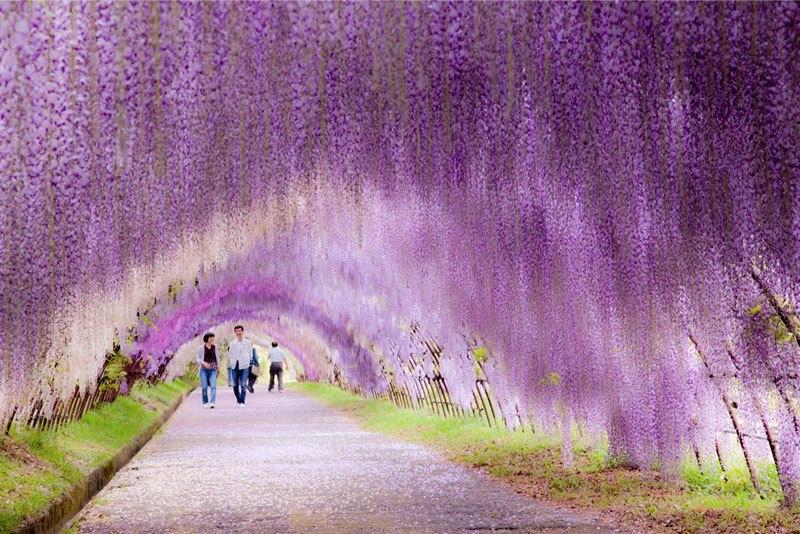ส่องสถานที่เที่ยวฟุกุโอกะ มนต์เสน่ห์แห่งญี่ปุ่นที่เที่ยวได้ไม่ซ้ำใคร