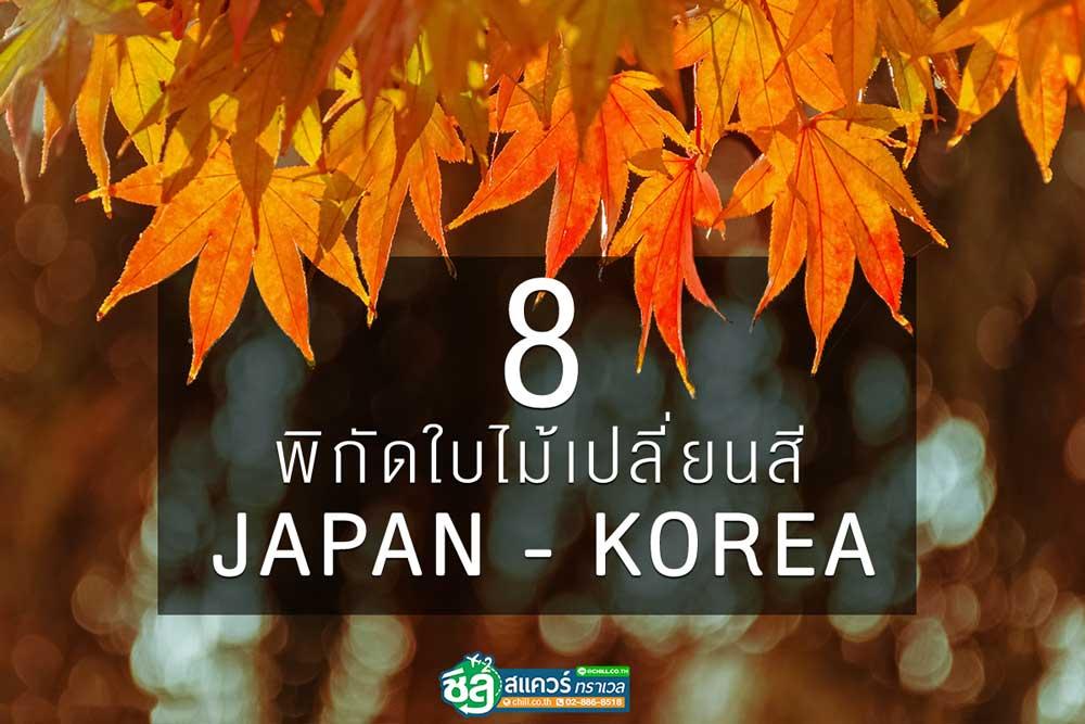 8 พิกัดใบไม้เปลี่ยนสี JAPAN-KOREA