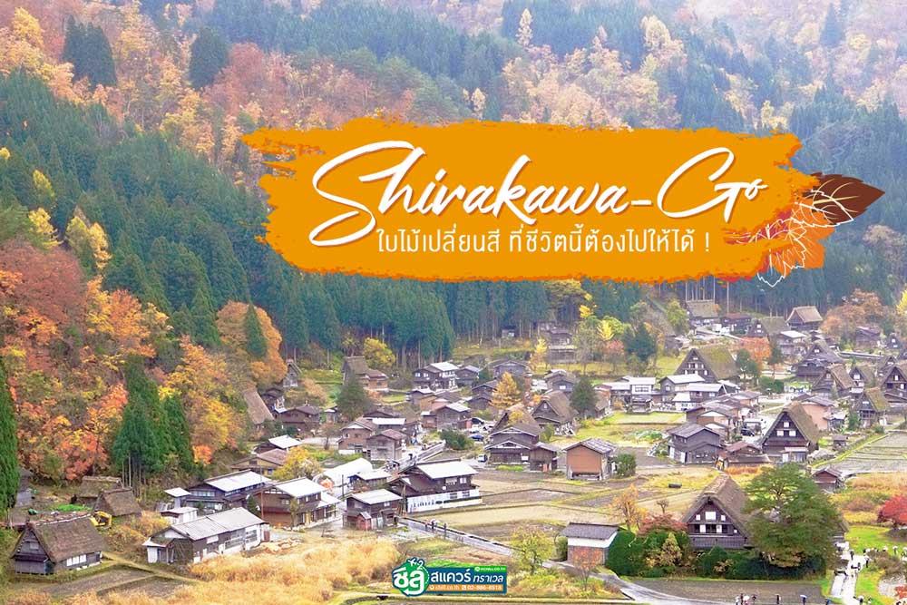 ชีวิตนี้ต้องไปให้ได้ ชมใบไม้เปลี่ยนสีญี่ปุ่น ณ ชิราคาวาโกะ