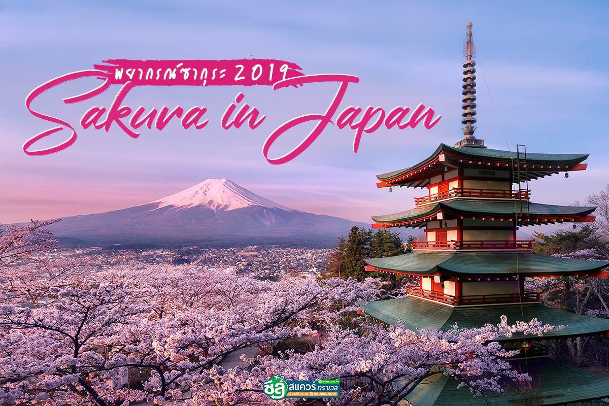 พยากรณ์ซากุระ 2019 ญี่ปุ่น บานช่วงไหน ?