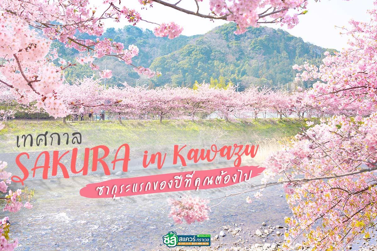 เที่ยวเทศกาลซากุระญี่ปุ่น ณ เมืองคาวาสึ ซากุระแรกของปีที่คุณต้องไป