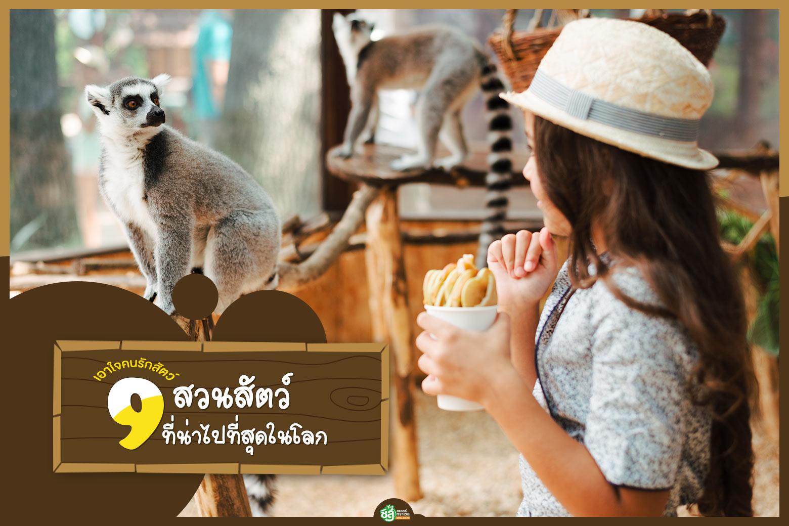 เอาใจคนรักสัตว์ พาตะลุย 9 สวนสัตว์ที่น่าไปที่สุดในโลก