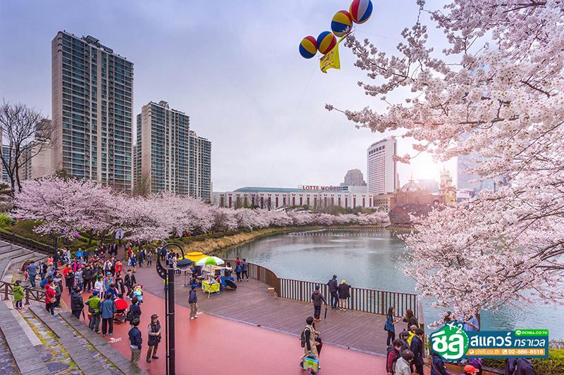 ทะเลสาบซอกชน (Seokchon Lake)