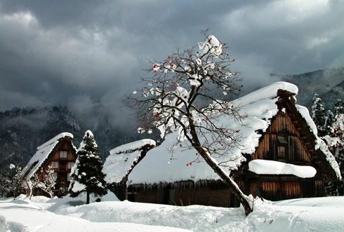 ฤดูหนาว